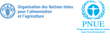 FAO UNEP